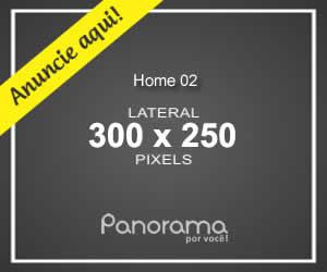 Home C2 300x250